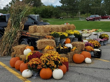 Selling Without Online Payment: Pumpkins and Fall Decor