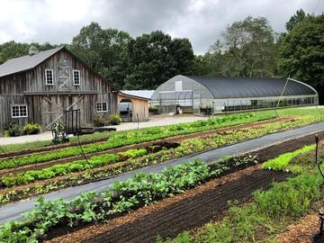 More Info: Red Thread Farm